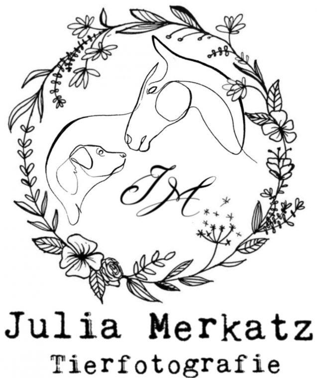 Julia Merkatz Tierfotografie